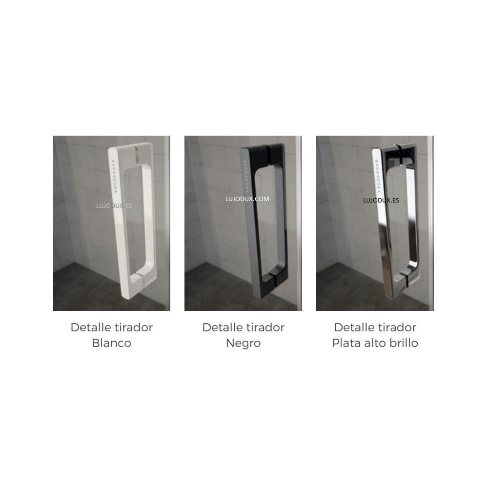 Mampara de ducha Glasé 1 fijo y 1 puerta corredera Tiradores